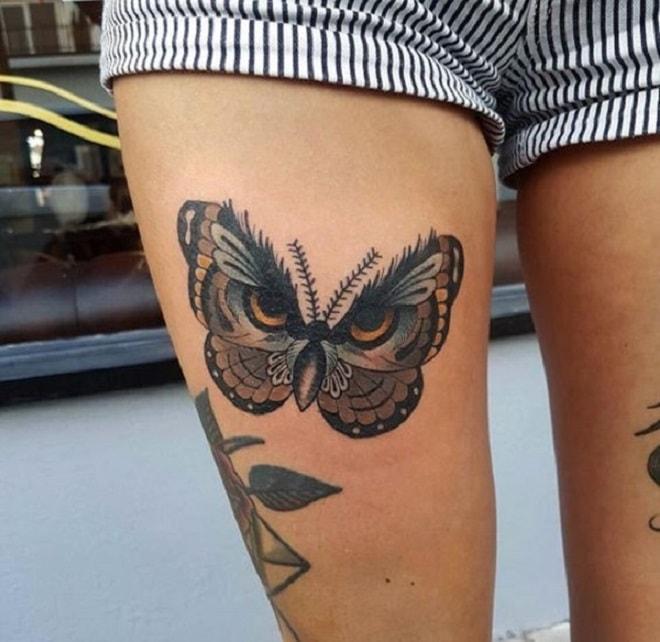 Owl-Looking Butterfly