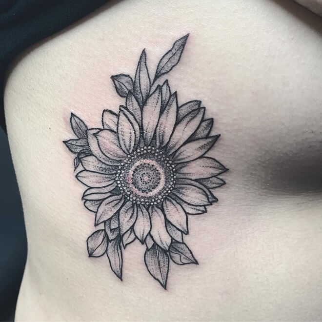 Sunflower Ribs Lotus