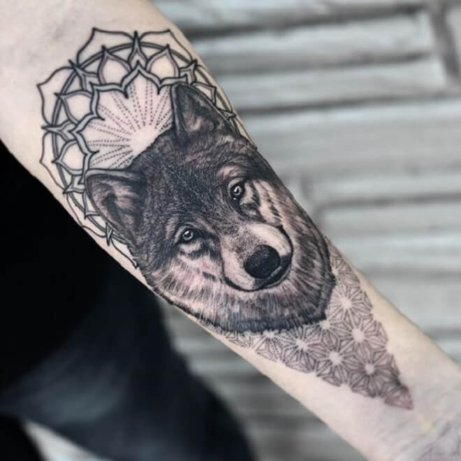 Wolf Tattoos Design