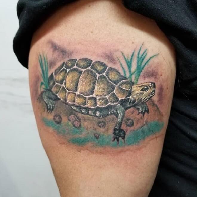 Beautiful Turtle Tattoo