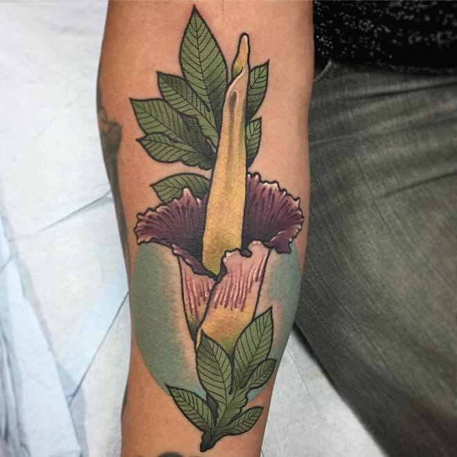 Corpse Flower Archive Tattoo