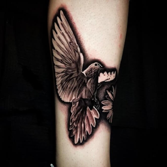 Dove Tattoo Art