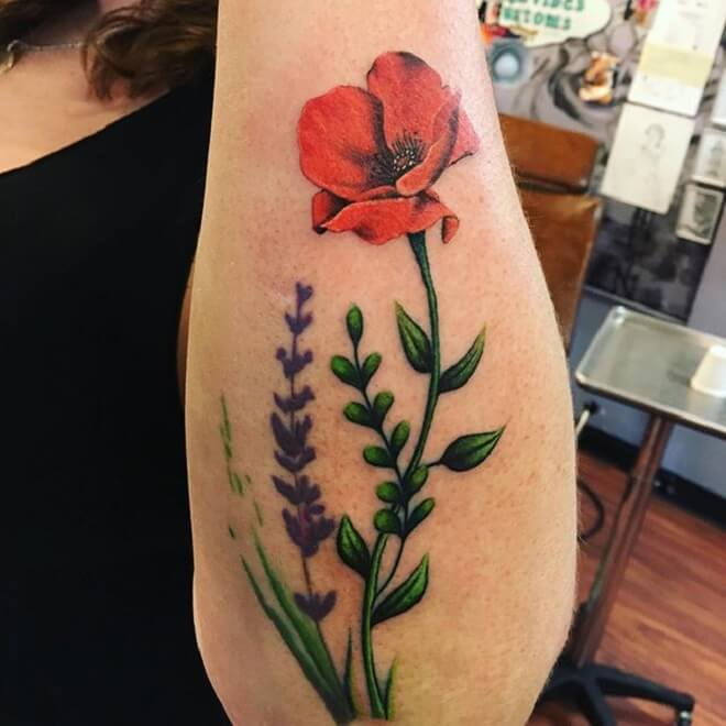 Beautiful Poppy Tattoo